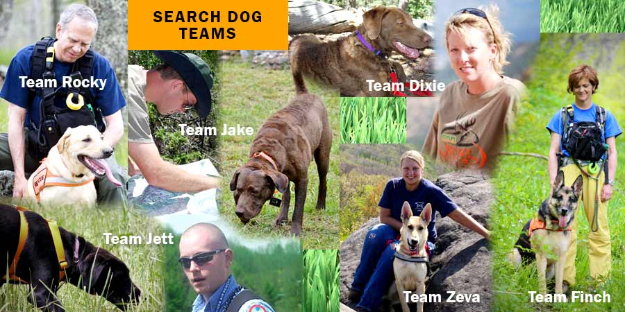 images/search_dog_teams_collage_2014.jpg